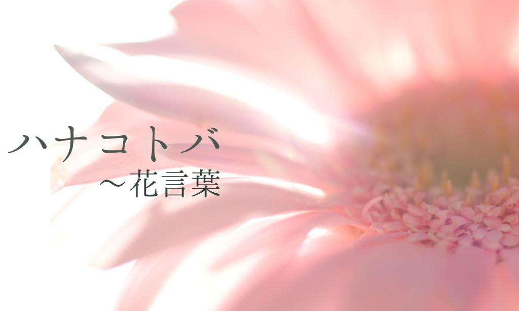 Fiori Bianchi Quattro Immagini Una Parola.Hanakotoba Il Linguaggio Dei Fiori Tradurre Il Giappone